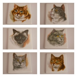 cat coasters plain
