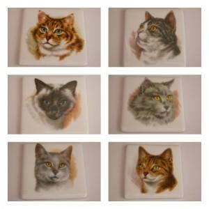 cat coasters plain