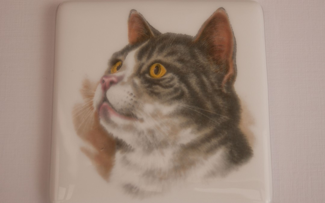Cat Coasters for Cat Rescue